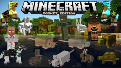 Minecraft pocket edition game